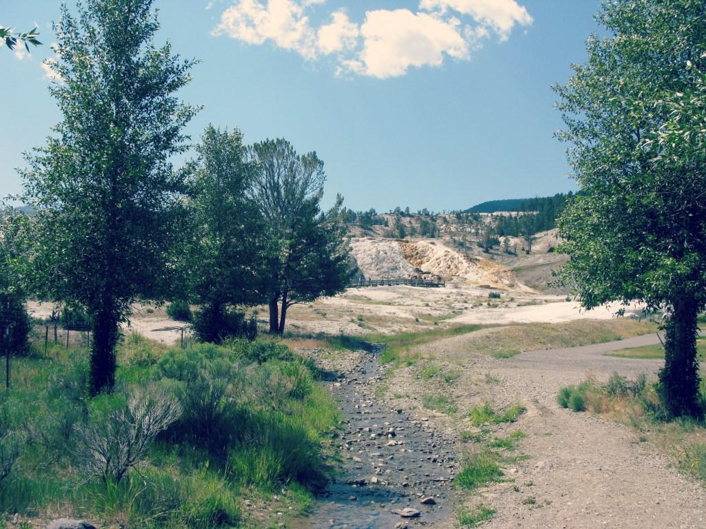 yellowstone sulfur springs