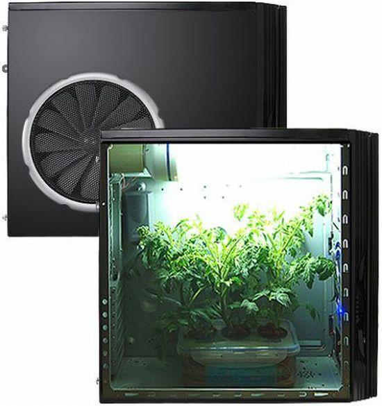 Hydroponic Grow Box