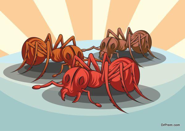 ant-invasion-1