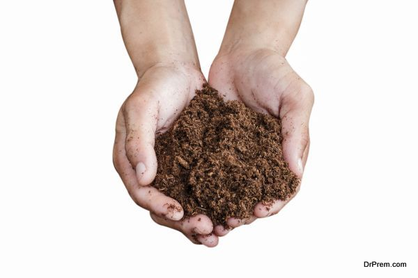 soil paet moss on hand isolated white background