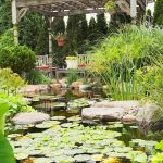 Enjoy the Peace and Serenity with Backyard Pond Decor 33
