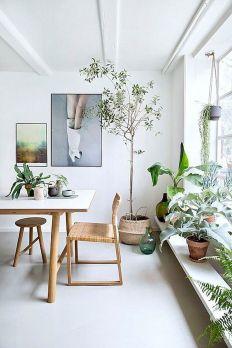 Apartment Indoor Gardening With Tropic Indoor Plants 85