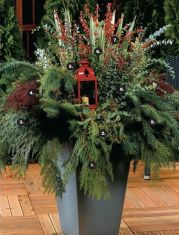 + Winter Garden Decoration Ideas