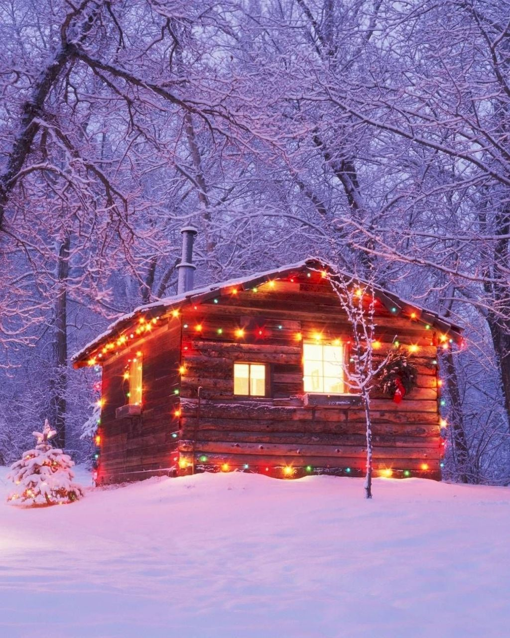 Amazing Outdoor Christmas Lights Decoration Ideas