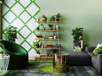Indoor Garden Ideas.jpg