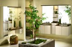 Adding Plants In Your Bathroom