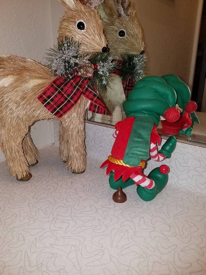 Elf on the Shelf Causing Trouble