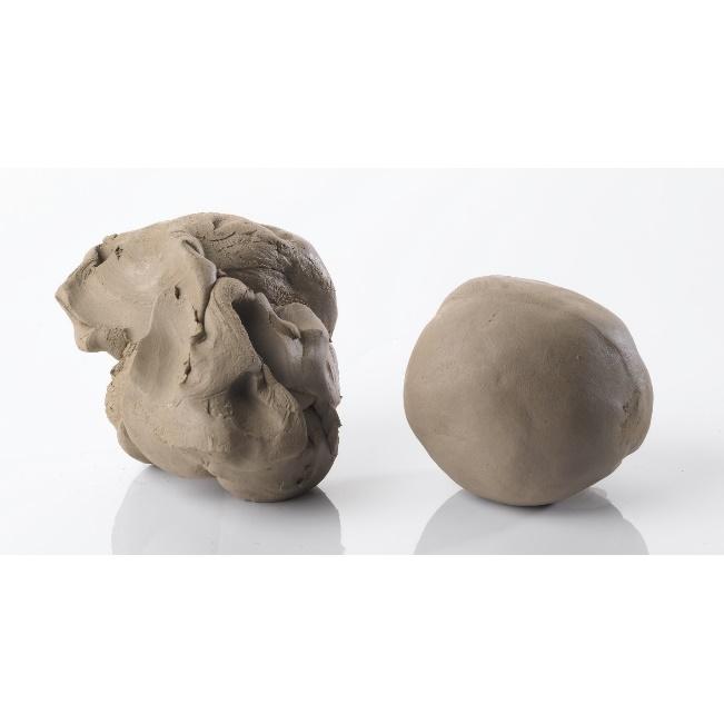 Buff Stoneware Clay - C1829056 | Findel International