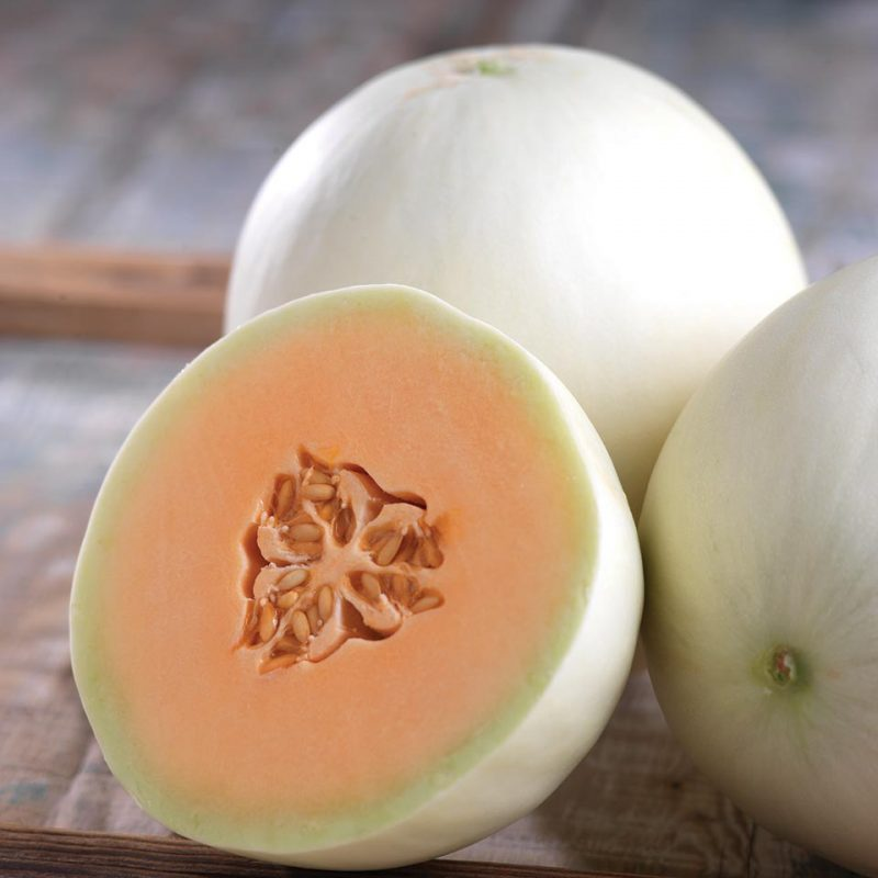 10 Cantaloupe And Melon Varieties You Need To Know - Growing Produce