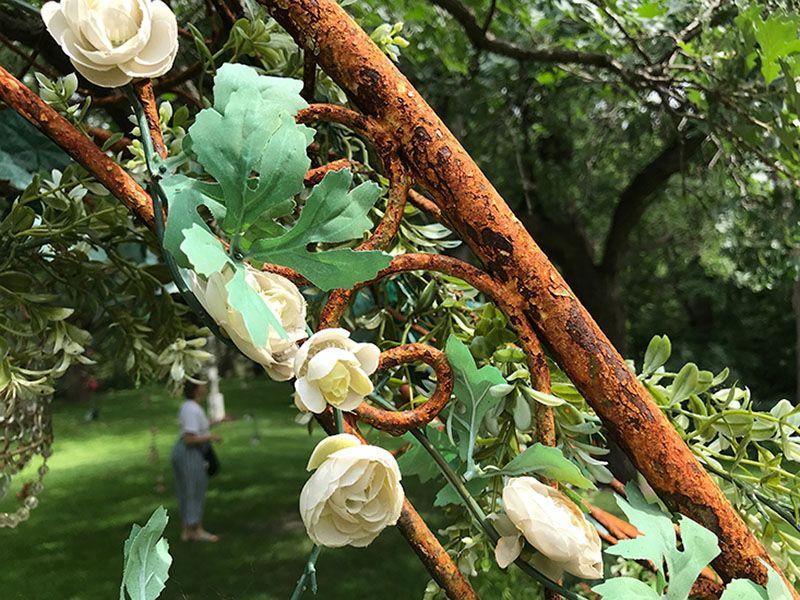 25 Awesome Garden Trellis Ideas in 2020 | Garden trellis, Wall trellis, Trellis