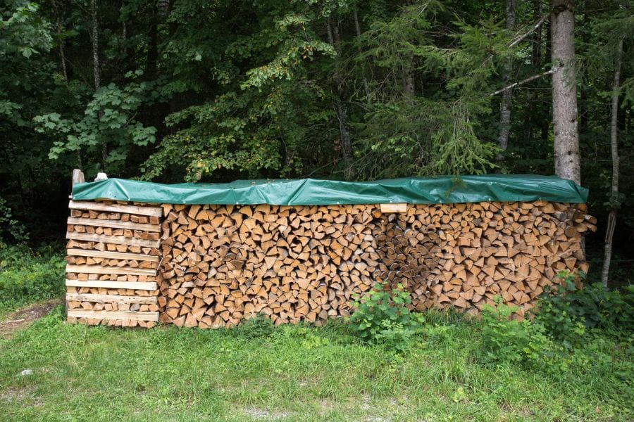 Firewood Under Tarp