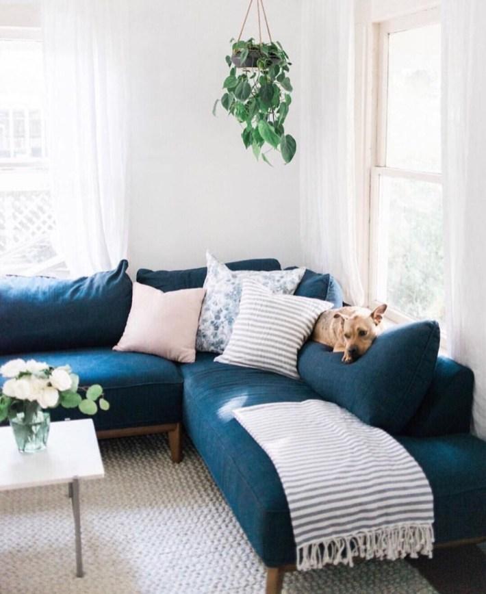 Lovely Colourful Sofa Ideas 01