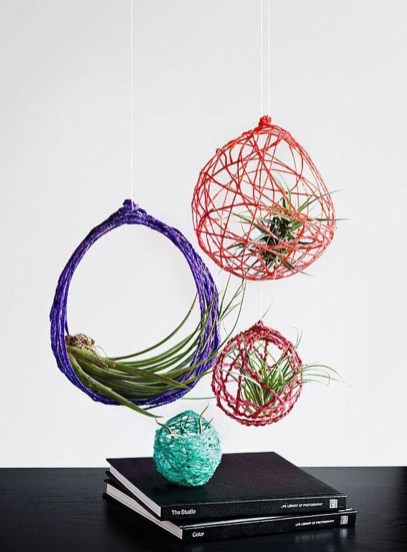 Amazing Air Plants Decor Ideas 16