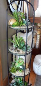 Amazing Air Plants Decor Ideas 18