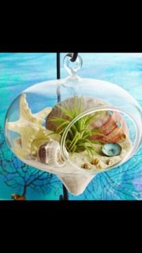 Amazing Air Plants Decor Ideas 32