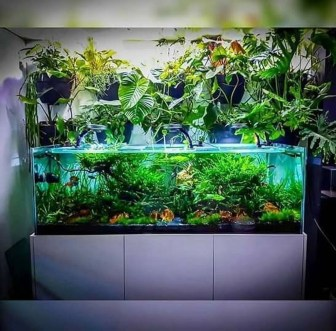 Amazing Aquarium Design Ideas Indoor Decorations 21