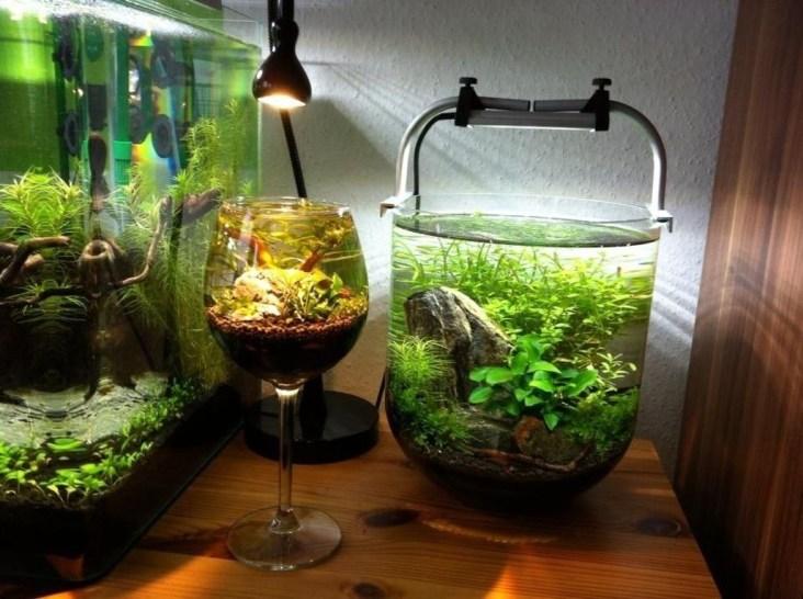 Amazing Aquarium Design Ideas Indoor Decorations 32