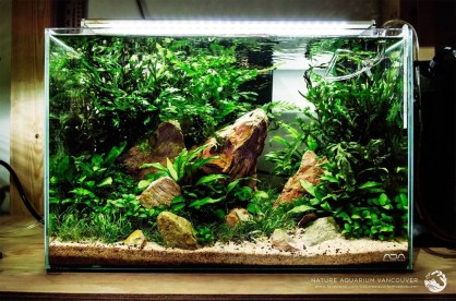 Amazing Aquarium Design Ideas Indoor Decorations 35