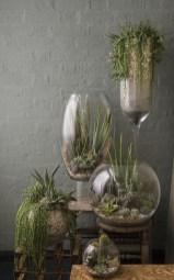 Amazing Diy Succulents Indoor Decorations 04