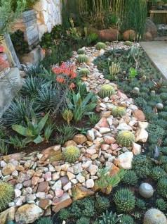 Amazing Succulents Garden Decor Ideas 03