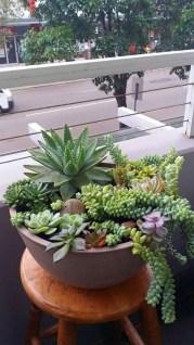 Amazing Succulents Garden Decor Ideas 05