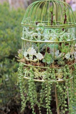 Amazing Succulents Garden Decor Ideas 32