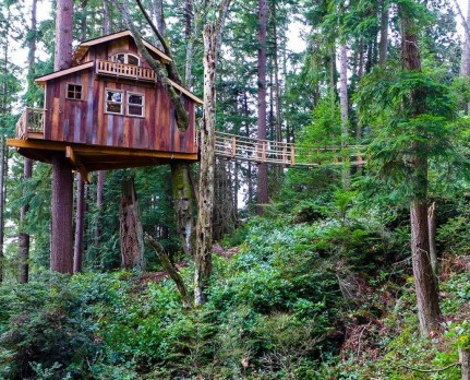 Awesome Treehouse Masters Design Ideas Will Make Dream 19