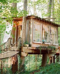 Awesome Treehouse Masters Design Ideas Will Make Dream 22