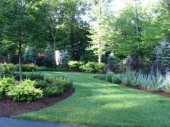 Amazing Evergreen Grasses Landscaping Ideas30
