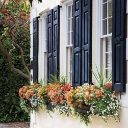 Amazing Windows Flower Boxes Design Ideas Must See11