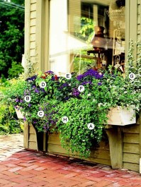 Amazing Windows Flower Boxes Design Ideas Must See33