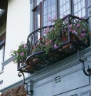 Amazing Windows Flower Boxes Design Ideas Must See41