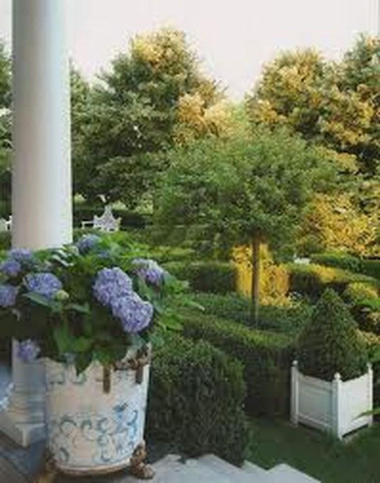 Elegant Colorful Bobo Hydrangea Garden Landscaping Ideas07