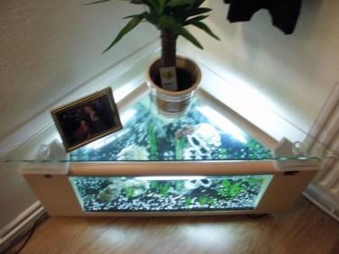 Amazing Aquarium Feature Coffee Table Design Ideas12