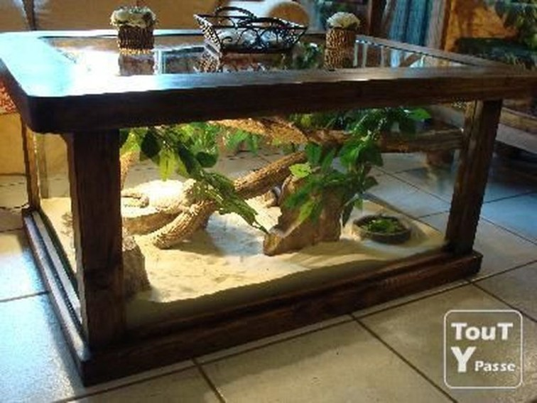 Amazing Aquarium Feature Coffee Table Design Ideas14