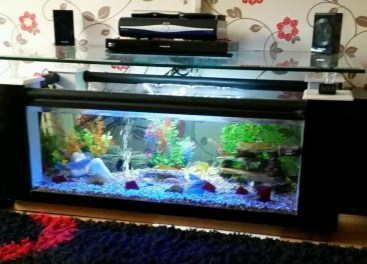 Amazing Aquarium Feature Coffee Table Design Ideas16