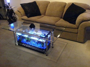 Amazing Aquarium Feature Coffee Table Design Ideas17