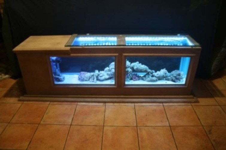 Amazing Aquarium Feature Coffee Table Design Ideas18