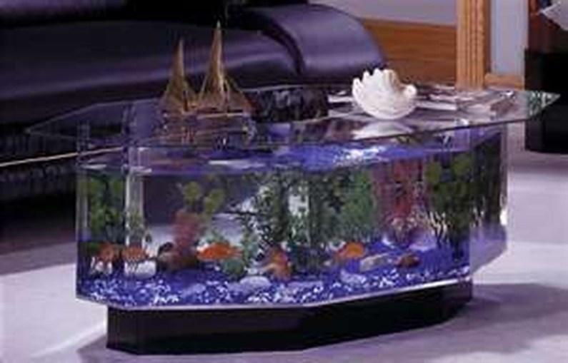Amazing Aquarium Feature Coffee Table Design Ideas30
