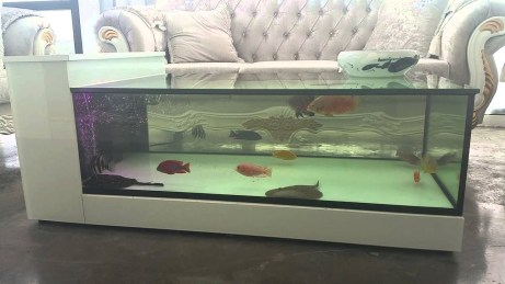 Amazing Aquarium Feature Coffee Table Design Ideas43