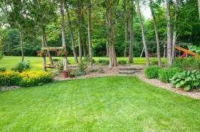Amazing Big Tree Landscaping Ideas14