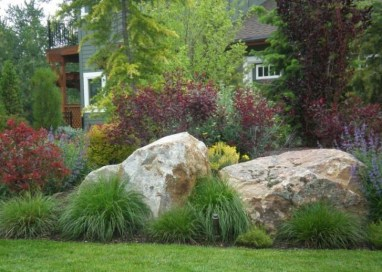 Amazing Grass Landscaping For Home Yard36