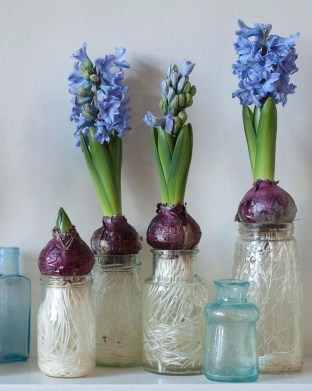 Awesome Ideas To Make Glass Jars Garden For Your Home Decor06