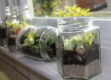 Awesome Ideas To Make Glass Jars Garden For Your Home Decor24
