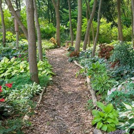 Awesome Diy Garden Path Inspiration Ideas25