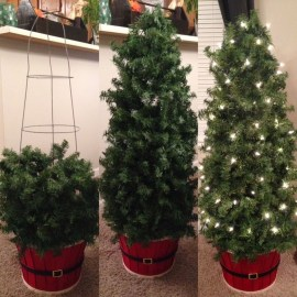 Amazing Outdoor Christmas Trees Ideas 03