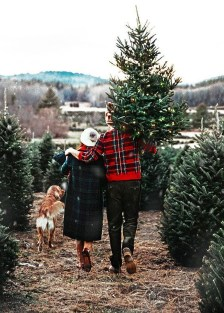 Amazing Outdoor Christmas Trees Ideas 23