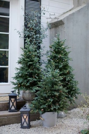 Amazing Outdoor Christmas Trees Ideas 24