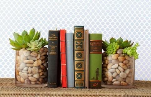 Cheap Succulent Plants Decor Ideas You Will Love28
