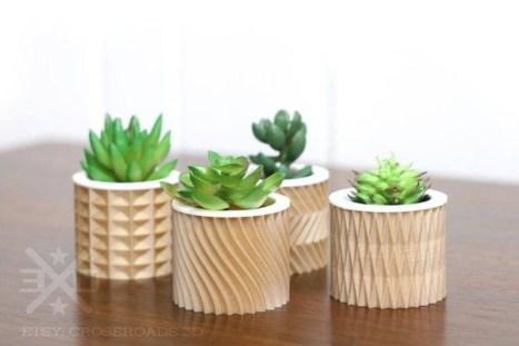 Cheap Succulent Plants Decor Ideas You Will Love36